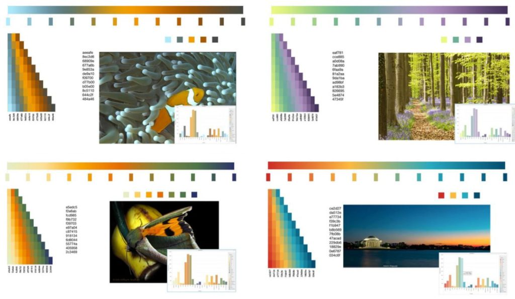 MicroStrategy 10.8 pre-defined color palettes